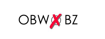Online-Umfrage zur Oberbürgermeisterwahl in Bautzen gestartet